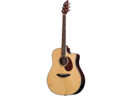 Breedlove Atlas Stage D25/SRe